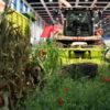 Grüne Woche Mähdrescher ErlebnisBauernhof 2011