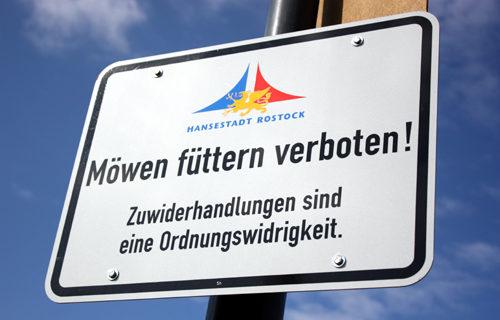 Möwen füttern verboten 2009