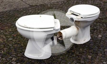 Toilettenbeckenpaar Berlin 2011