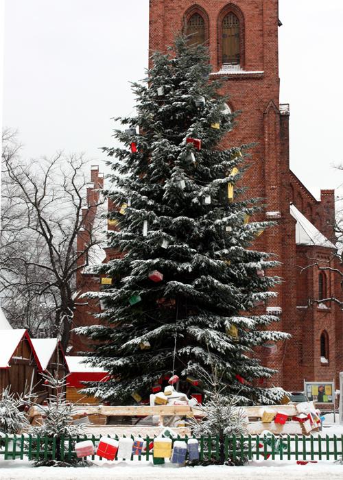 Warnmünner Wiehnachtstied Weihnachtsbaum Kirchenplatz 2010