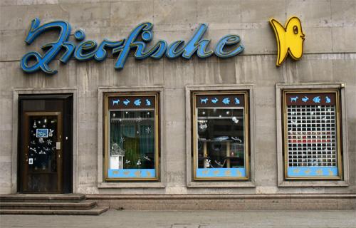 Zierfische Berlin 2009